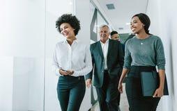 Drużyna korporacyjni profesjonaliści w biurowym korytarzu fotografia royalty free
