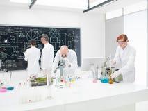 Drużyna naukowowie w laboratorium zdjęcie royalty free