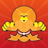 Drużynowa logo bitwy pazurów lwa symbolu sporta maskotka Zdjęcie Royalty Free