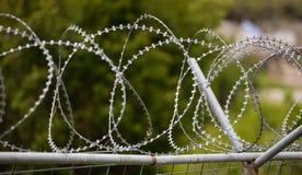 Druciany barbed siatka metalu ogrodzenie, ostrze z żyletkami, okrąg Ostrzegać niebezpieczeństwo dla wrogów Zamazany natury tło, z zdjęcia royalty free