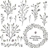 21 Botanical set hand drawn flowers and branches elements vector