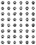 Druck von Hundetatzen Lizenzfreies Stockfoto
