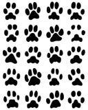 Druck von Katzentatzen Lizenzfreies Stockbild
