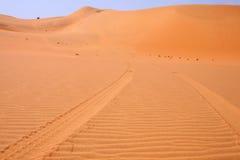 Drucke eines Autos in der afrikanischen Wüste Stockfotos
