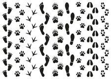 Drucke von Spuren von Leuten und von Tieren auf einem weißen Hintergrund vektor abbildung