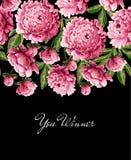 Drucken Sie für T-Shirt mit rosa Pfingstrosenblumen und -slogan Auch im corel abgehobenen Betrag Stockfotografie