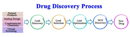 Drug Discovery Process. Stages of Drug Discovery Process vector illustration