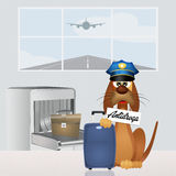 Drug dog in airport Stock Image