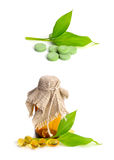Drug and leaves Royalty Free Stock Photography