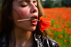 Drug and love intoxication, opium, fashion. royalty free stock images