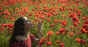 Drug, opium, narcotics, carelessness. Summer, spring, poppy flower. Opium poppy, youth, freshness, ecology, woman Poppy Remembrance day Anzac Day Woman blow royalty free stock photos