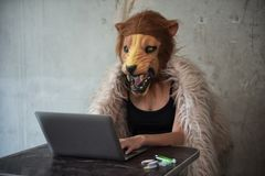 Drug selling and trafficking over internet. Drug selling over the internet. Bad sexy female woman agent with lion mask using laptop computer to trafficking Stock Photo