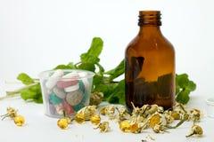 Drugs en droge kamille voor medische behandeling farmaceutisch Stock Foto's