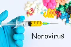 Drugs for Norovirus treatment. Syringe with drugs for Norovirus treatment Royalty Free Stock Image