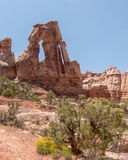 Druid Arch, Canyonlands National Park, UT Royalty Free Stock Image
