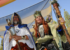 druid czarownik obrazy royalty free