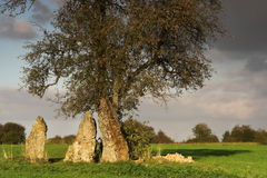 Druid place. Three great menhirs surrounding a solitary tree, waiting for the druids royalty free stock images