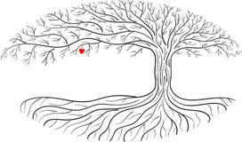 Druidic苹果树,卵形剪影,黑白树商标用一个红色苹果 免版税库存图片