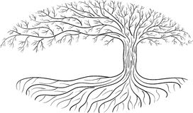 Druidic Yggdrasil tree, oval silhouette, black and white logo Royalty Free Stock Photo