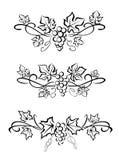 Druif branchs en bladeren Royalty-vrije Stock Afbeelding