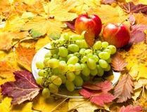 Druif en appel op de achtergrond van de herfstbladeren Royalty-vrije Stock Afbeeldingen
