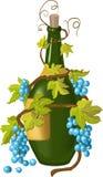 Druif en fles Stock Afbeeldingen