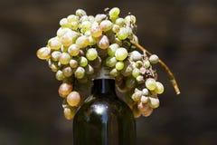 Druif en wijn royalty-vrije stock afbeelding