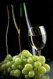 Druif en wijnen Stock Fotografie