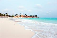 Druif strand på den Aruba ön Royaltyfri Fotografi