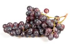 Druif van rode wijn Stock Fotografie