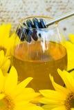 Druipende honing en zonnebloemen stock afbeeldingen