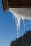 Druipende ijskegels Royalty-vrije Stock Afbeelding
