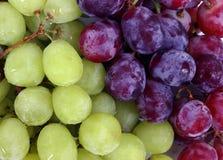 Druiven Royalty-vrije Stock Afbeelding