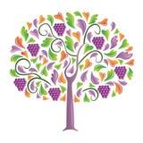 Druiven. Royalty-vrije Stock Afbeeldingen