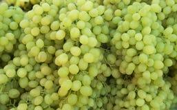 Druiven Bossen van groene druiven Royalty-vrije Stock Afbeeldingen