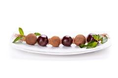 Druiven die met chocoladeglans worden behandeld Royalty-vrije Stock Foto's