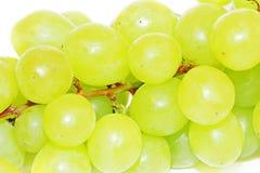 Druiven die op wit worden geïsoleerdb Stock Afbeelding