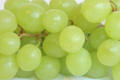 Druiven die op wit worden geïsoleerdl Stock Afbeeldingen