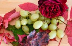 Druiven en andere seizoengebonden vruchten op de houten achtergrond stock afbeeldingen