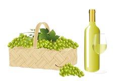 Druiven en een flessen witte wijn royalty-vrije illustratie