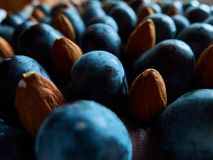 Druiven en noten op de cake stock afbeelding