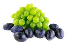 Druiven en pruim Stock Afbeeldingen