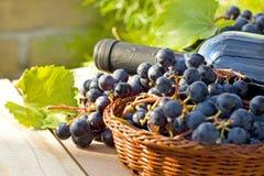 Druiven en wijnflessen stock fotografie