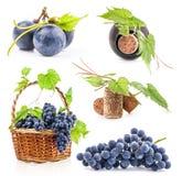 Druiven, fles en cork Stock Foto's