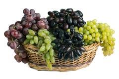 Druiven in mand Stock Fotografie