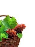 Druiven in mand Royalty-vrije Stock Afbeeldingen
