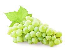 Druiven met blad stock foto