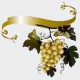 Druiven met Bladeren Stock Afbeelding
