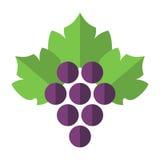 Druiven met geïsoleerde bladeren Royalty-vrije Illustratie