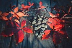 Druiven op de lijst Stock Foto